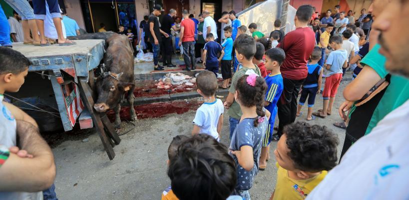 ذبح الأضاحي في غزة