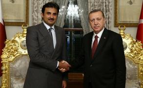 أمير قطر يزور تركيا ويلتقي أردوغان