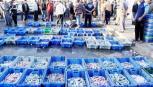 نقيب الصيادين: الاحتلال يقلص مساحة الصيد ببحر غزة