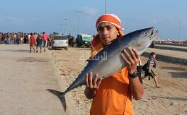 صيادو غـزة .. وكـرم التـهدئـة