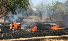 الحرائق التهمت عدد من خلايا النحل بفعل بالون حارق أطلق من غزة