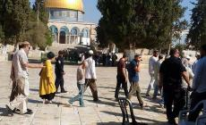 52 مستوطنا يقتحمون المسجد الأقصى