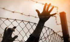 587 أسيرا يقضون أحكاما بالسجن المؤبد مدى الحياة