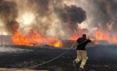 إخلاء 3 أحياء في احدى مستوطنات الاحتلال  بسبب حريق كبير