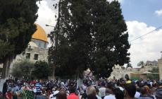 """عشرات الآلاف يتوافدون إلى الأقصى لأداء """"الجمعة الأولى"""" من رمضان"""