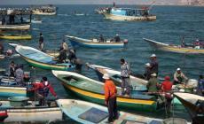 """""""الزراعة"""" تنظّم تصدير الأسماك والصيادون يطالبون بزيادة الكميات المصدرة"""