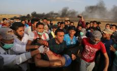 """""""أوتشا"""": """"قنابل الغاز"""" قتلت وجرحت الألاف على حدود غزة"""