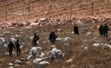 الاحتلال يستولي على مساحات واسعة من أراضي سلفيت