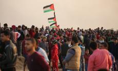 غزة تستعد لدعم وادي الحمص