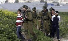 الاحتلال يعتقل فتيين من سلوان