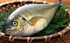 السمك مفيد للحوامل