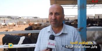 د. ابراهيم القدرة وكيل مساعد وزارة الزراعة حول موسم الأضاحي في غزة