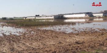 #شاهد| الاحتلال يفتح السدود ويغرق أراضي المزارعين شرق غزة