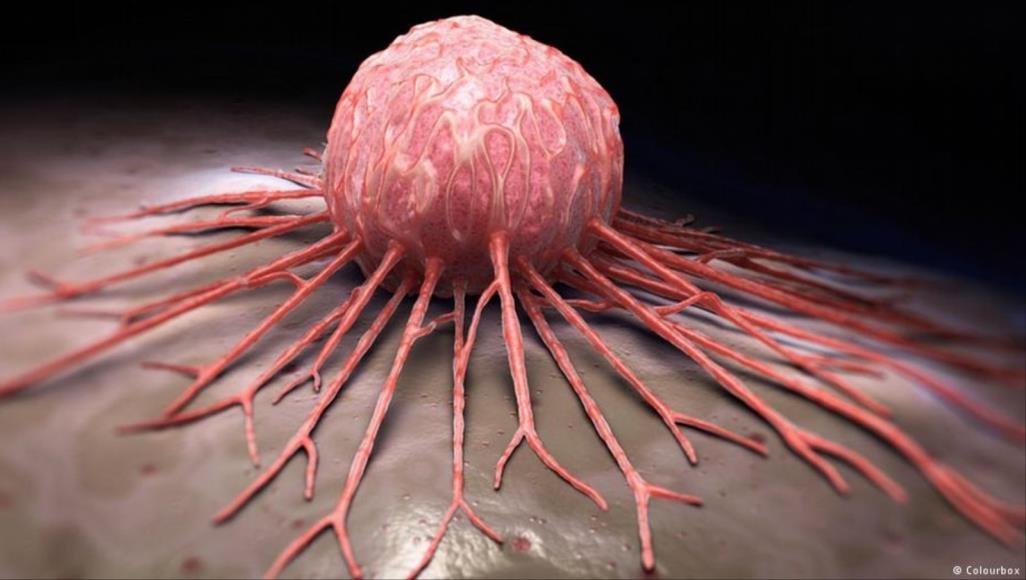 العلاج المناعي أسلوب واعد في حرب الأطباء ضد السرطان