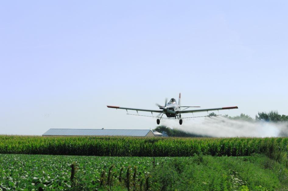 رش المبيدات.jpeg